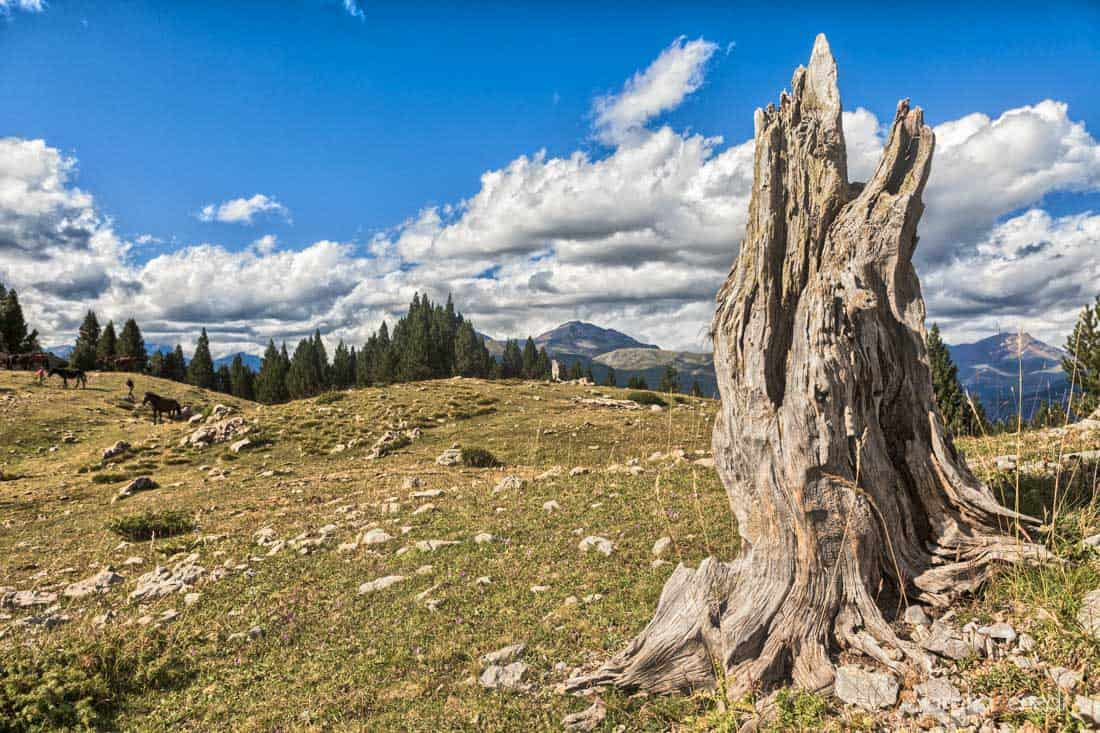 Camino Pico de Lavasar