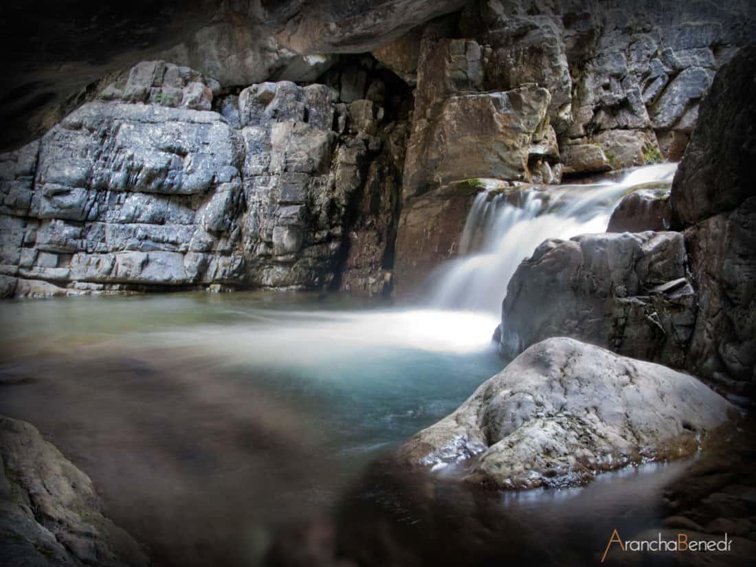 Agua, Tierra, Naturaleza, Fauna, Flora, ...